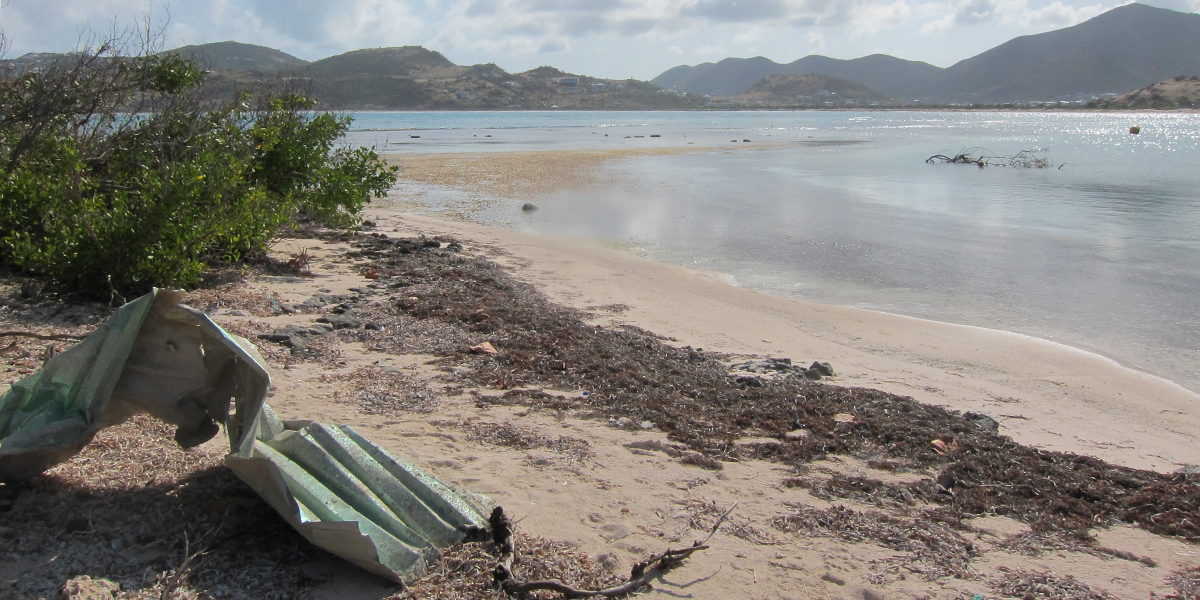 A Caribbean beach after a hurricane. Seagrass is a great natural protector of beaches against storms and reduces the need for human intervention. Photo: Rebecca James