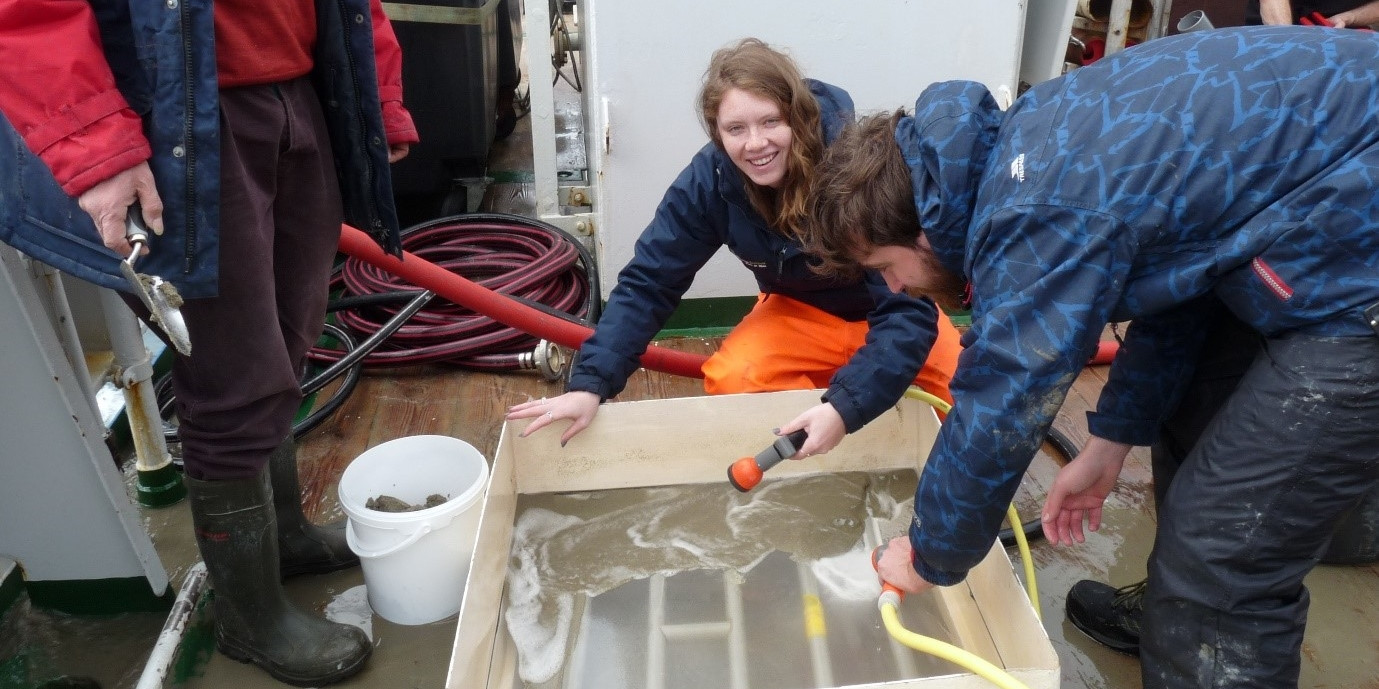 Sieving the sediment from a box corer