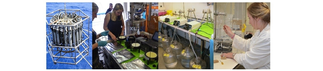 From left to right: CTD deployment on board of the R/V Pelagia to collect seawater from different depths in the water column; collecting filters from in-situ pumps; filtering CTD water over different porosities; lipid extract separation by means of aluminium oxide column chromatography.