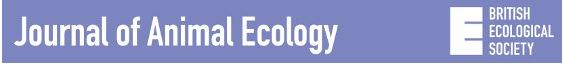 Read the article published in the Journal of Animal Ecology.