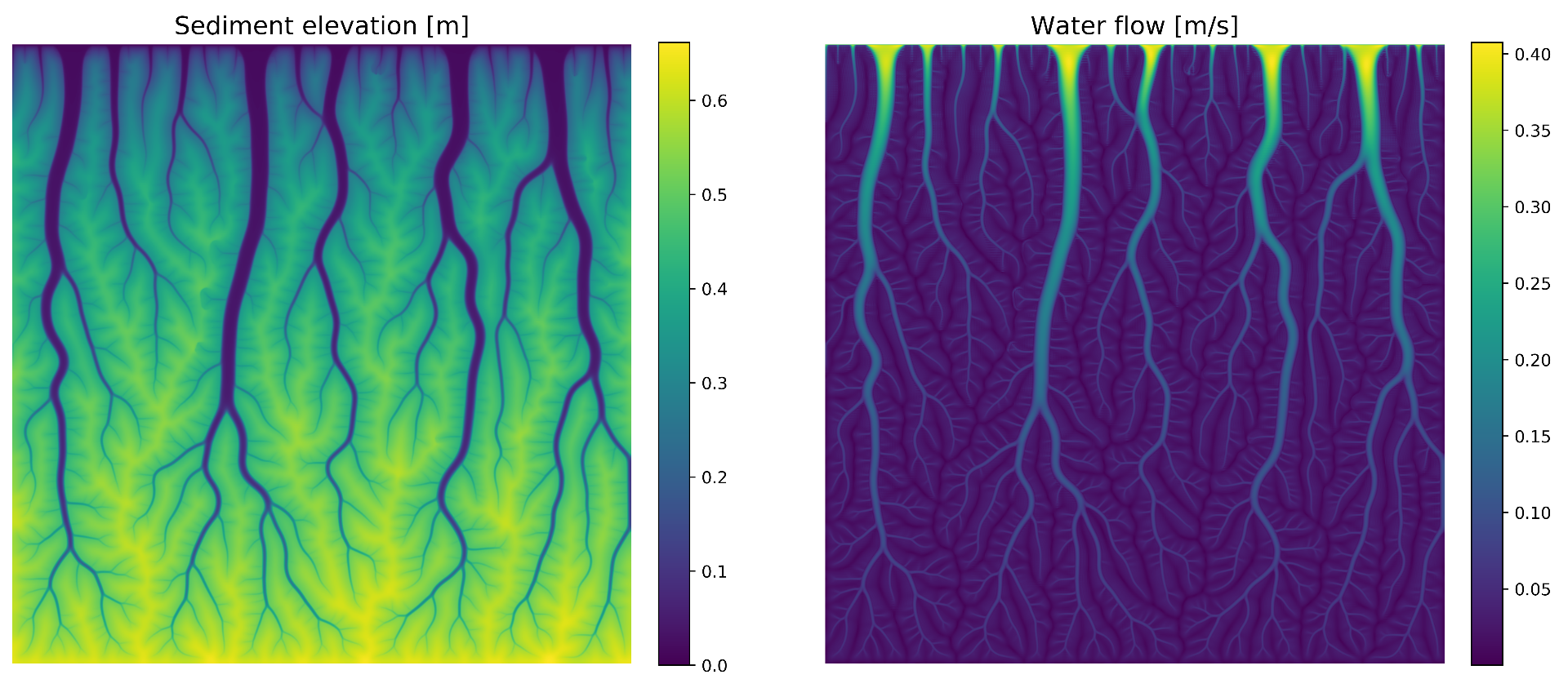 Numerically simulated tidal marsh (200m x 200m).