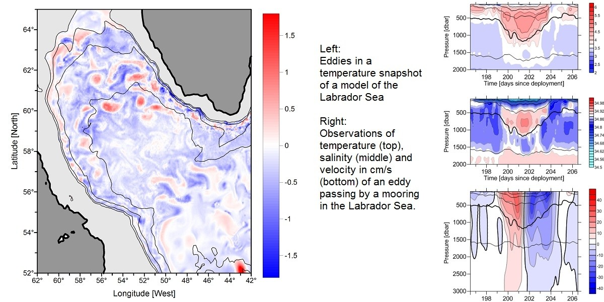 Example of modelled and observed eddies in the Labrador Sea.