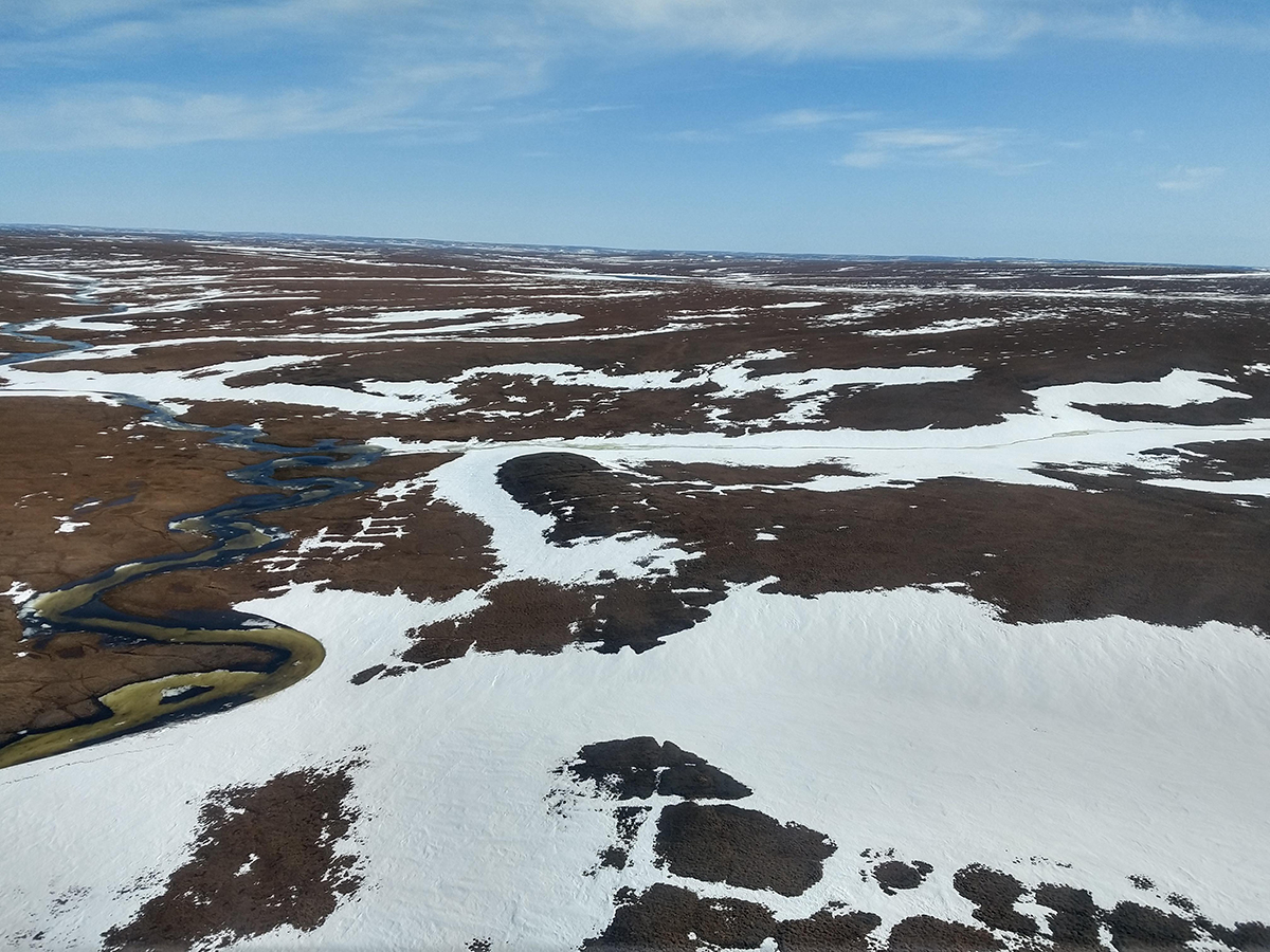 6 June 2019 A 'helicopter view' on Taimyr: already quite some snow has melted – will the team be in time to await the birds?