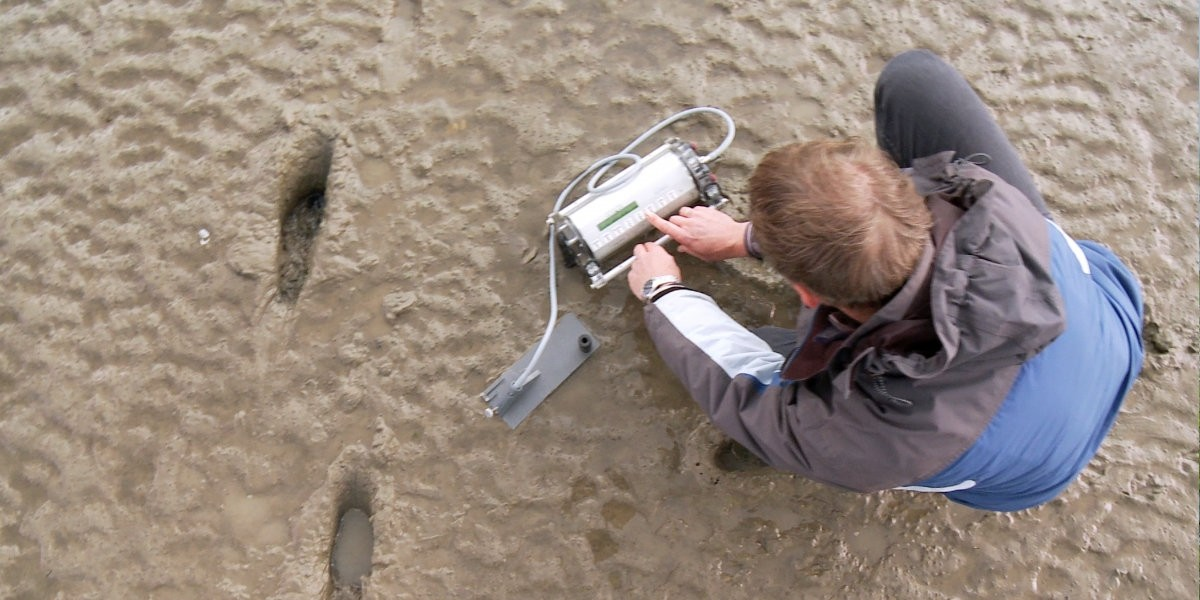 Measuring the activity of the microbial mat on the mudflat