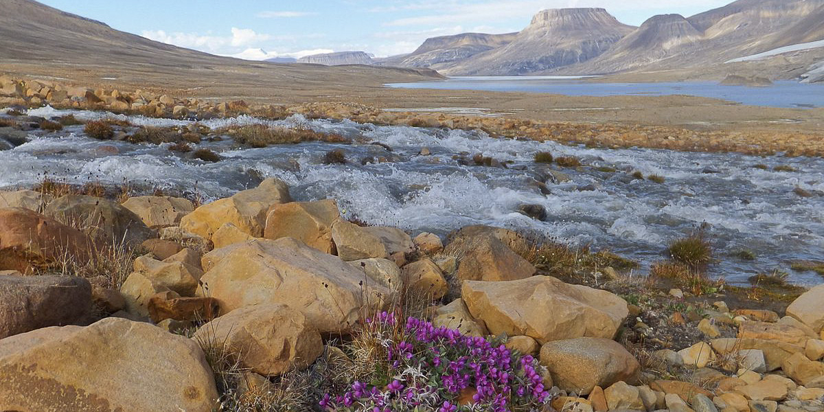 Quttinirpaaq National Park, Ellesmere Island, Paul Gierszewski / WIKI MEDIA