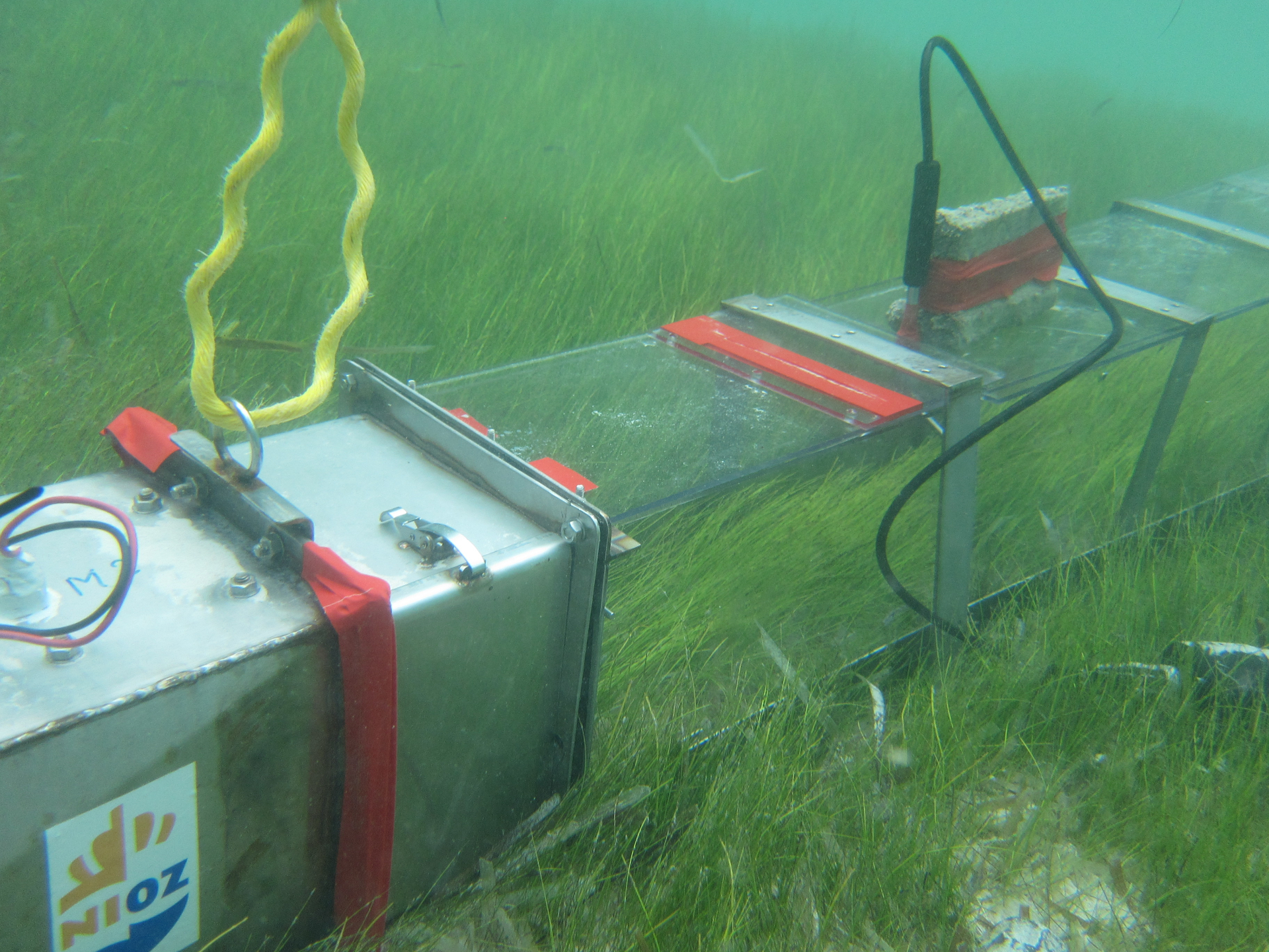 A portable water flume designed at NIOZ was used to measure the ability of seagrass to keep sand in place and prevent erosion. Photo credit: Rebecca James