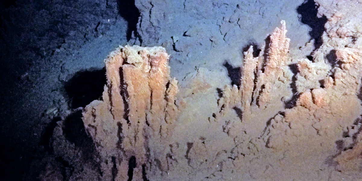 Our Future Ocean: Hydrothermal vent fields