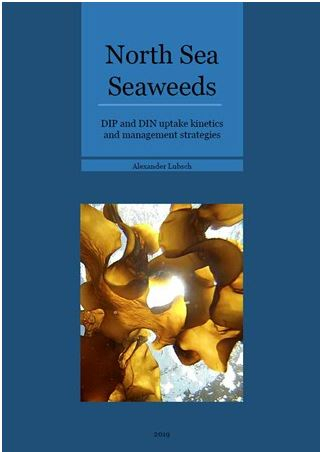 Thesis Alexander Lubsch: North Sea Seaweeds: DIP and DIN uptake kinetics and management strategies