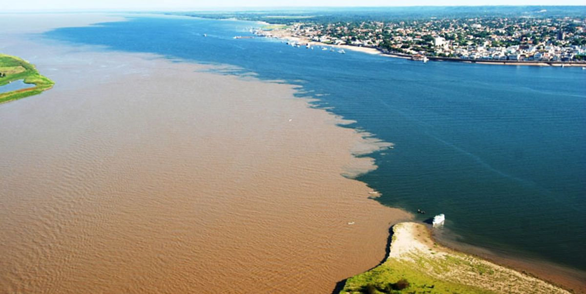Sediment-laden waters of the Amazon River flush into the Atlantic Ocean. (image from crazyask.com)