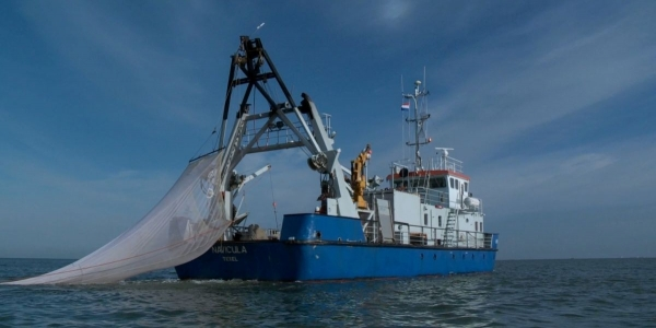 RV Navicula with fishing net overboard