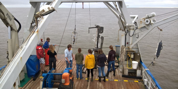 Working on deck of RV Navicula (© NIOZ).